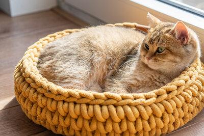 Sunny Basket - Okergeel
